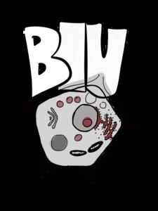 Biologie und Umweltkunde